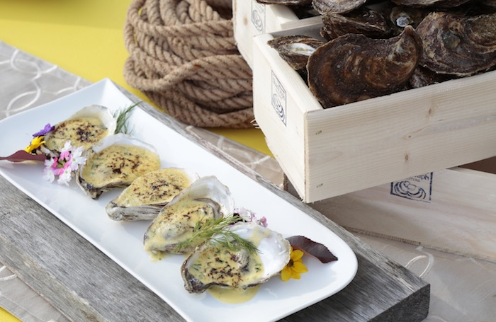 ANova Scotia oysters