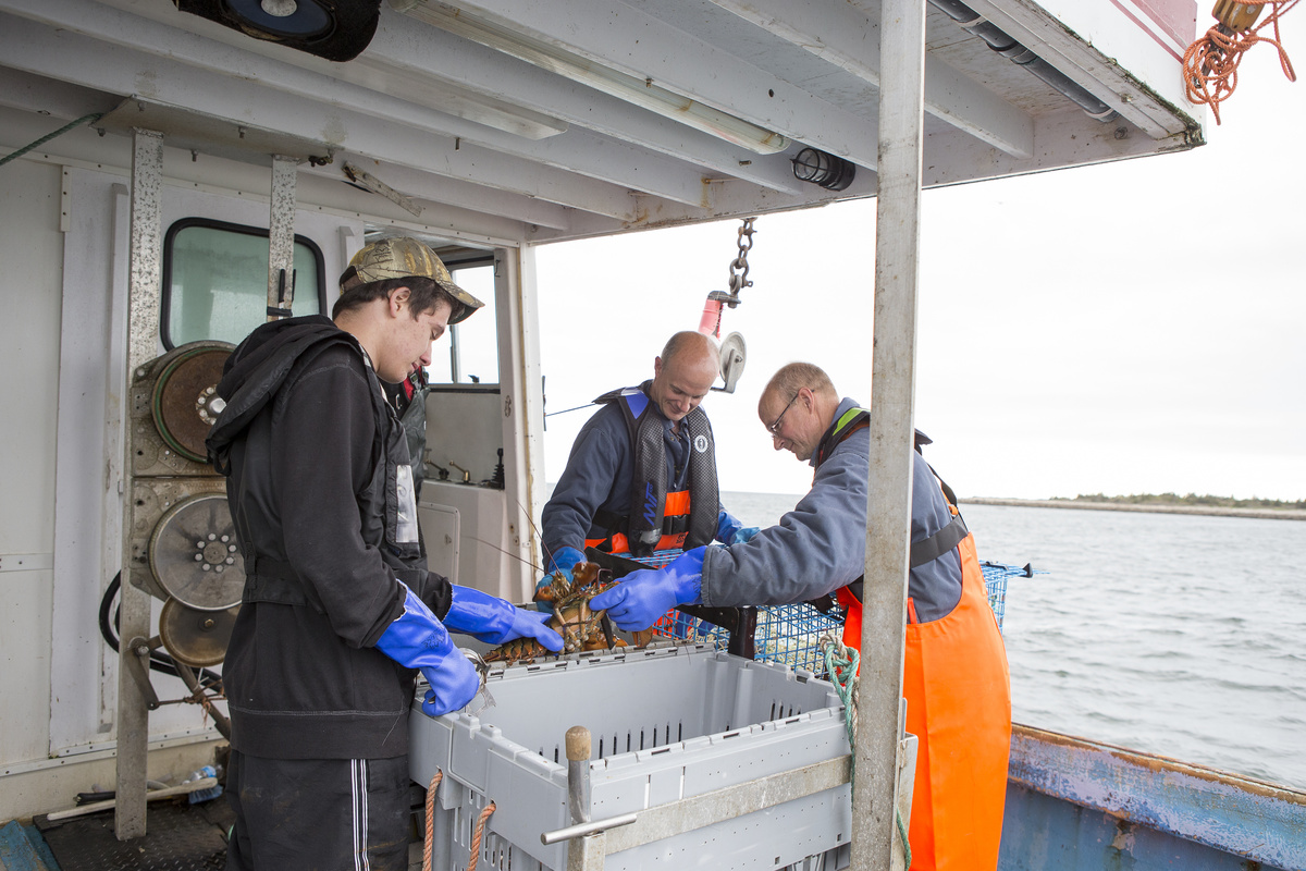 The Fisheries and Aquaculture Student Bursary Program aims to help Nova Scotia fill the labour gap for aquaculture, seafood buying and seafood processing facilities.