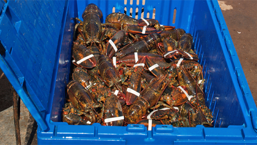An historic lobster summit will be held March 26-27 in Halifax.