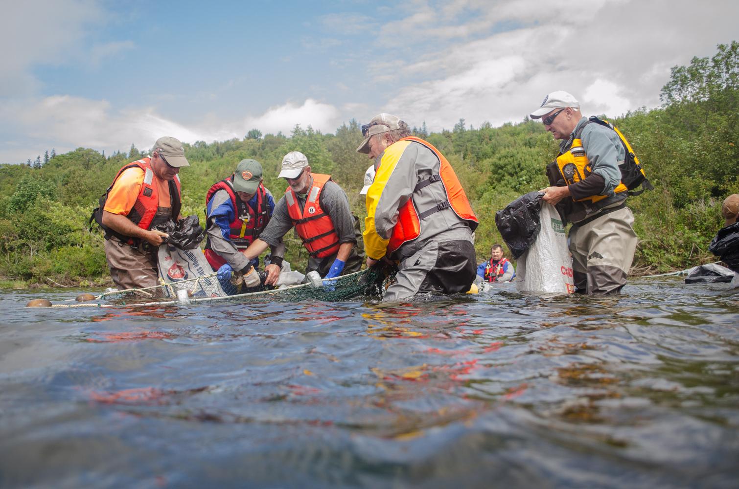 Fall salmon fishing on the way government of nova scotia for Nova scotia fishing