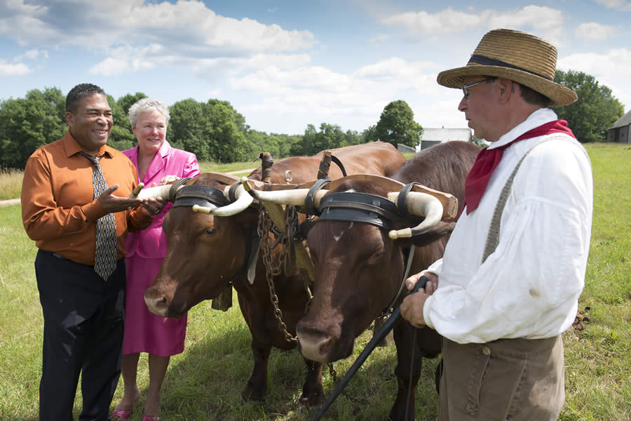 (From left) Communities, Culture and Heritage Minister Tony Ince, Valerie White, president of the New Ross District Museum Society and Cameron Broome, Ross Farm Museum, teaming the oxen, Lion and Bright.