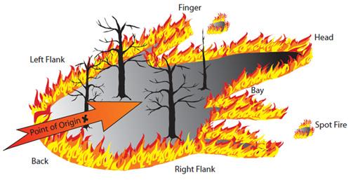 anatomy of a fire