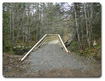 Natural Resources Used To Build A Bridge