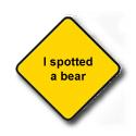 I spotted a bear
