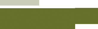 MemoryNS Logo