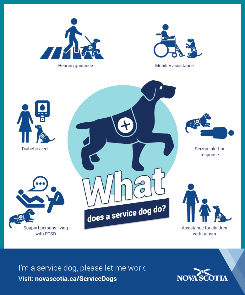 service dog act - government of nova scotia, canada